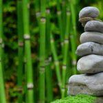Ładny ,a także miły dla oczu ogród to zasługa wielu godzin spędzonych  w jego zaciszu w toku pielegnacji.